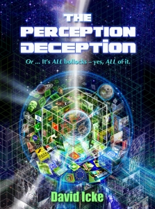The Perception Deception Book Cover